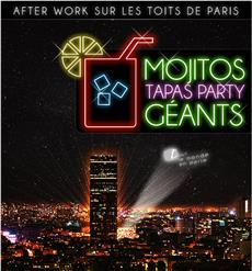 AFTER WORK MAGIQUE SUR LES TOITS DE PARIS