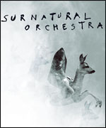 SURNATURAL ORCHESTRA  carrefour